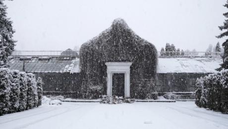 Історія Зимового саду