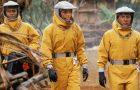 Хроника: коронавирус и кино (обновляется регулярно)