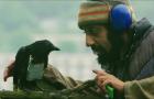 11 лучших фильмов XXI века о терроризме: по следам реальных и вымышленных трагедий