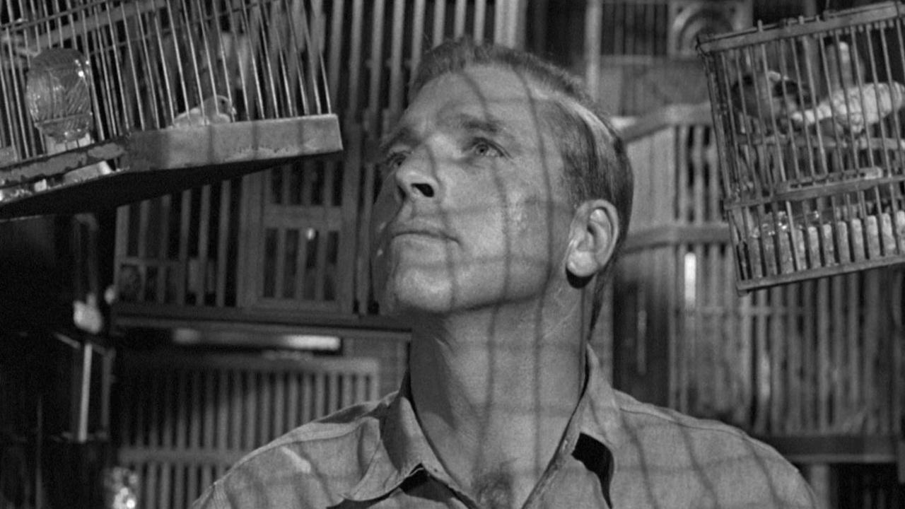 Любитель птиц из Алькатраса (Birdman of Alcatraz)1962