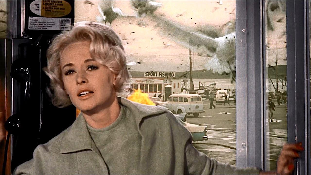 Птицы (The Birds)1963
