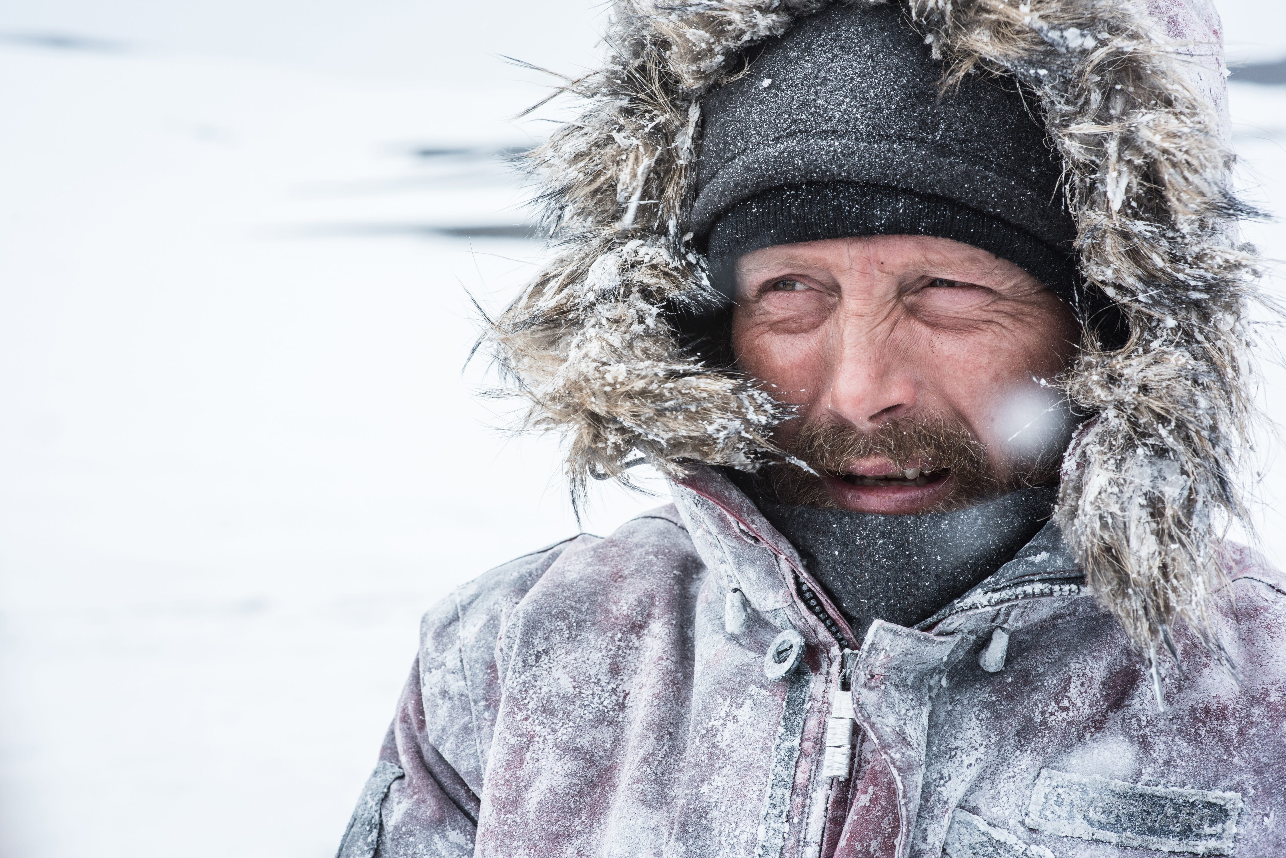 Затерянные во льдах (Arctic, 2018