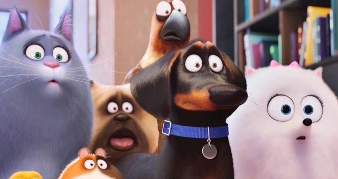 Трейлер: Тайная жизнь домашних животных 2 (The Secret Life of Pets 2)