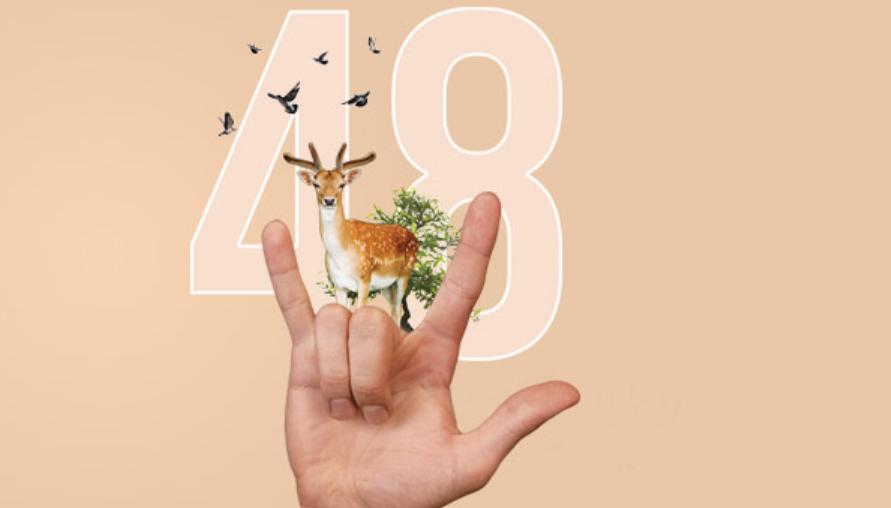 48-й фестиваль кіно «Молодість» оголосив програму