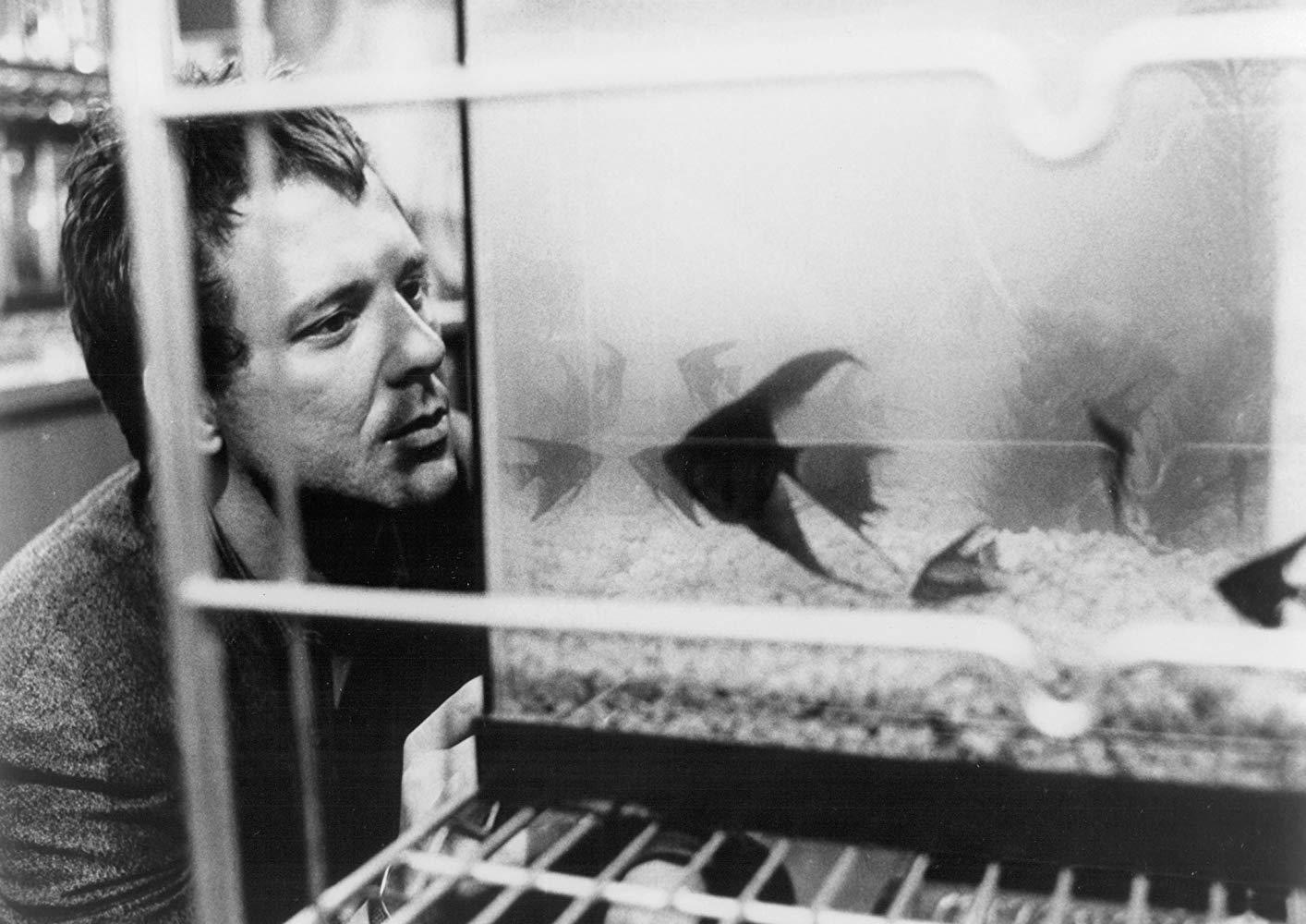 Бойцовая рыбка (Rumble Fish) 1983