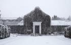 «Історія Зимового саду» Семена Мозгового виходить у прокат 5 грудня