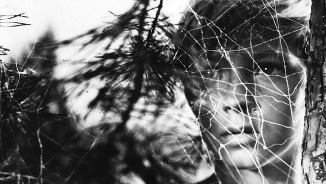 Кадр из фильма «Иваново детство». Режиссер Андрей Тарковский. 1962 год Война, показанная через искалеченное сознание ребенка